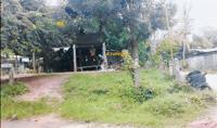 บ้านเดี่ยวหลุดจำนอง ธ.ธนาคารกสิกรไทย ร้อยเอ็ด พนมไพร โพธิ์ชัย